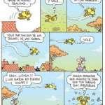¿Los gatos vuelan?
