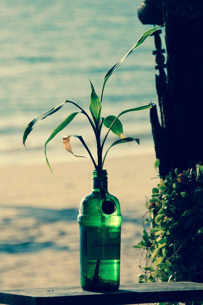 5 formas efectivas de cambiar tu vida