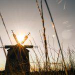 La gratitud, el camino más corto a la felicidad