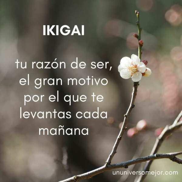 ikigai, tu razón de ser