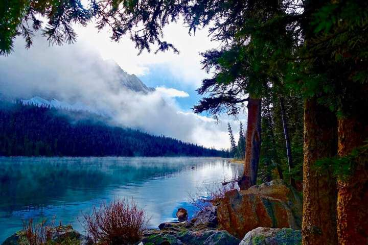 Alan Watts: Pensamientos que revitalizaron mi vida